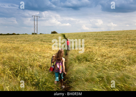 Girl and Boy Walking Through Wheat Field in Lincolnshire, England,GB - Stock Photo