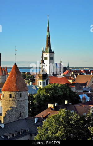 View from the cathedral hill, Toompea, towards the lower old town with city walls and St. Olafs church, Tallinn, - Stock Photo