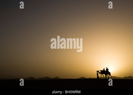 A man, a bedouin leading two camels with tourists, a mother and two children at sunset, Marsa Alam desert, Red Sea, - Stock Photo