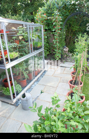 A  small garden greenhouse full of tomato plants, sweet peppers cucumbers and lettuce with a small patio area surrounding - Stock Photo