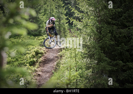 Mountainbiker jumping on a trail in the forest, Lillehammer, Norway - Stock Photo