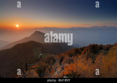 Larches in autumn colours in evening light, Monte Legnone, Bergamo Alps, Como, Lombardy, Italy - Stock Photo