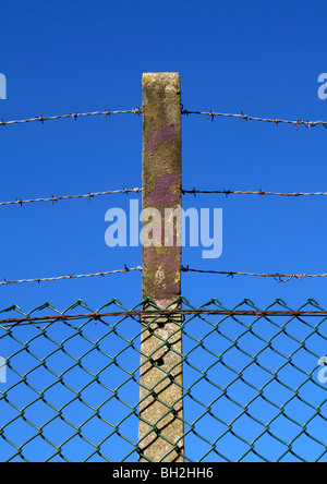 Old barbed wire fence against blue sky - Stock Photo