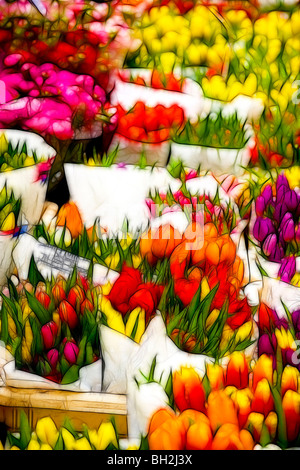 Photo illustration:  Displays of tulips for sale at a market in Spring - Stock Photo