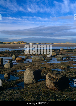 A view of sand dunes and beach along Druridge Bay in Northumberland - Stock Photo