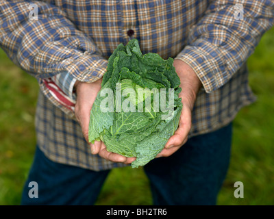 Man with cabbage head - Stock Photo