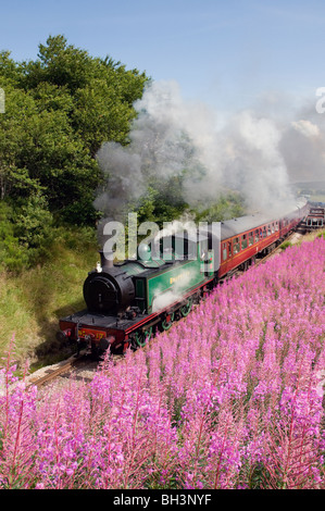 steam engine braeriach at broomhill station on the strathspey railway scotland - Stock Photo