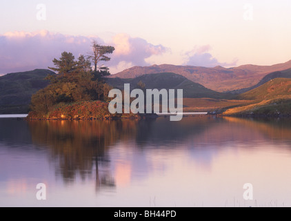 Llynnau Cregennen Island reflected in lake Snowdonia National Park Gwynedd Mid Wales UK - Stock Photo