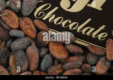 Chocolate bar and cocoa beans - Stock Photo