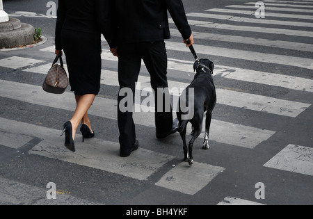 Paris: a couple dressed in black on a zebra crossing with a black dog - Stock Photo