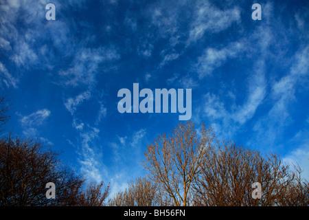 White Wispy Cirrus High clouds deep blue sky - Stock Photo