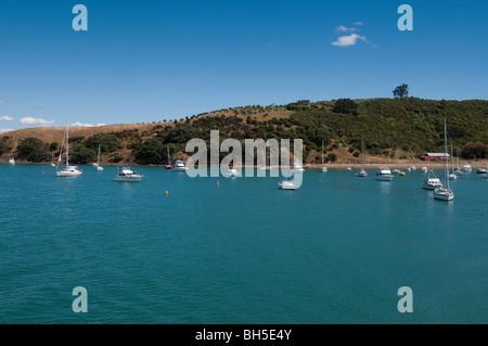 Group of sailing boats moored in Waiheke island, New Zealand - Stock Photo