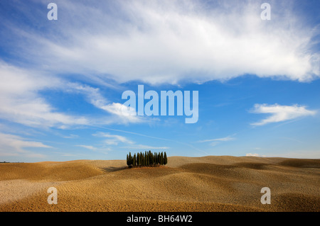 Orcia valley in autumn - Stock Photo