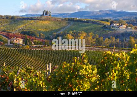 Chianti classico vineyards in autumn - Stock Photo