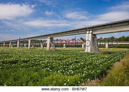 Transrapid TR09 monorail train elevated track diverging lines maglev magnetic levitation high-speed travel Lathen - Stock Photo
