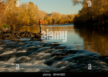 Idaho, Boise, Woman casting while fly fishing on the Boise River in autumn colors - Stock Photo