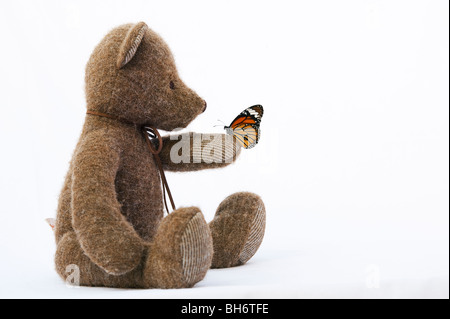 Teddy bear holding a Striped Tiger butterfly against a white background - Stock Photo