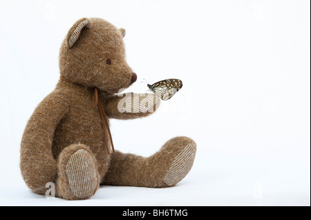 Teddy bear holding a Blue Tiger butterfly against a white background - Stock Photo