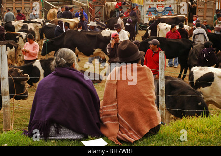 Ecuador, Otavalo, side view of a senior couple with grey hair and a black hat, wrapped in a purple poncho and a - Stock Photo