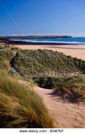 Freshwater West Pembrokeshire Pembrokeshire Coast National Park Wales - Stock Photo