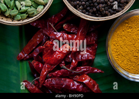 High angle view of spices - Stock Photo