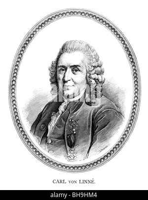 Carl Linnaeus was a Swedish botanist, physician, and zoologist - Stock Photo