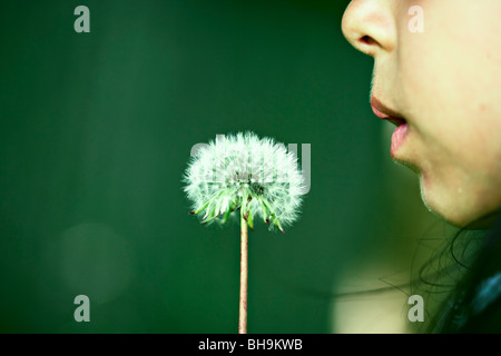 girl blows dandelion - Stock Photo