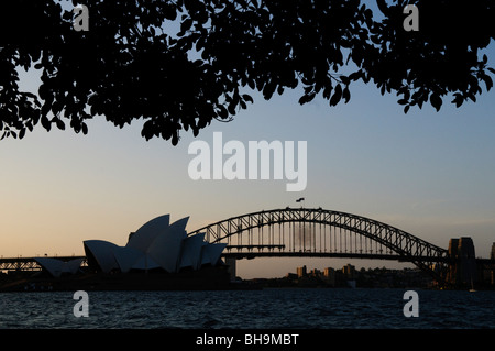 SYDNEY, Australia - SYDNEY, Australia - Sydney Opera House and Sydney Harbour Bridge silhoutte with trees framing - Stock Photo