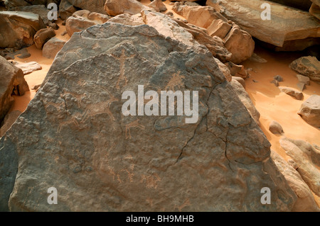 Neolithic rock art depictions of wildlife at Wadi Hamra in the Gilf Kebir region of the Western Desert of Egypt, - Stock Photo