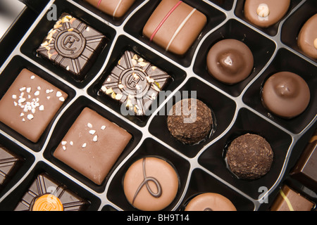 Luxury Hotel Chocolat hand made chocolates in UK (a Christmas selection) showing the HC logo stamp - Stock Photo