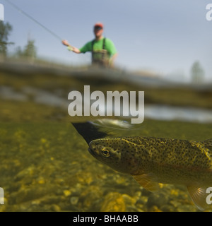 Underwater perspective of a fly fisherman fishing for rainbow trout in Montana Creek, Southcentral, Alaska - Stock Photo