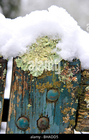 Snowfall on old wooden fence in Parthenay Deux-Sevres Poitou Charentes France - Stock Photo