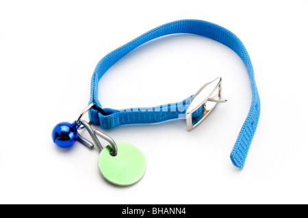 PET COLLAR ON WHITE - Stock Photo