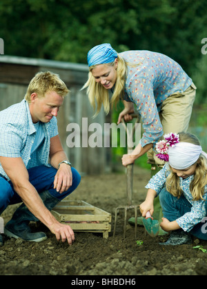 A family working in a vegetable garden - Stock Photo