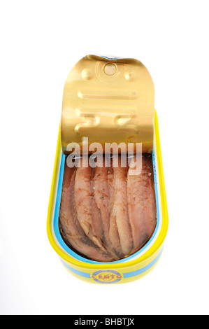 Fillets of anchovies in open tin on white background cut out. - Stock Photo