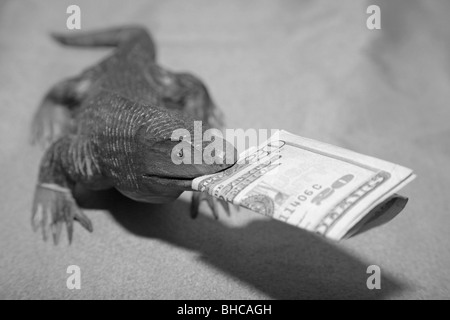 Wooden komodo dragon lizard souvenir carving biting US 20 dollar bill currency bank note in it's mouth - Stock Photo