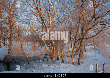 New Palestine, Indiana - A rising sun lights up trees on the banks of a stream on an Indiana farm in winter. - Stock Photo