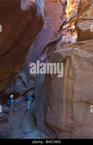 USA, Utah, Vermilion Cliffs NM, Paria Canyon-Vermilion Cliffs Wilderness. Female hikers in Buckskin Gulch,s deepest - Stock Photo