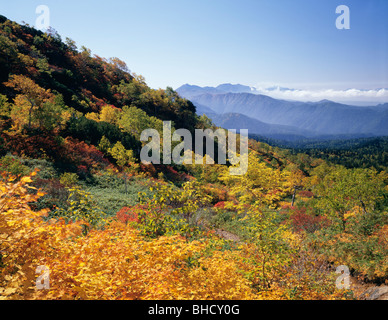Mt Daisetsu and surrounding forest in Autumn, Kamikawa, Hokkaido, Japan - Stock Photo