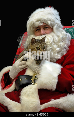 Portrait of Santa Claus with a mackerel tabby cat - Stock Photo
