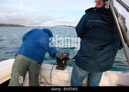 sportfishing halibut - Stock Photo
