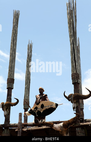 A zulu man with a shield in traditional dress stand on a lookout point in a traditional Zulu village in South Africa
