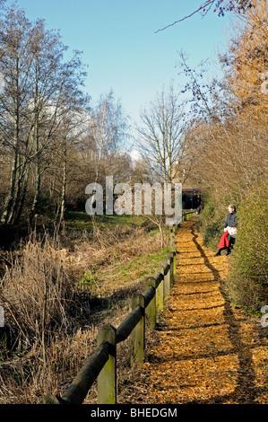 Camley Street Natural Park Photos