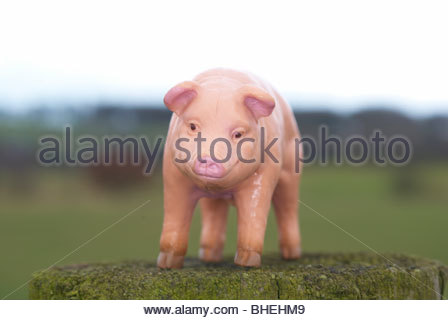 Plastic pig model photographed outside in a field. - Stock Photo