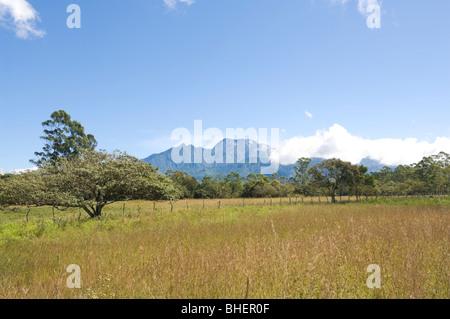Panama Volcan Baru Chiriqui Province - Stock Photo