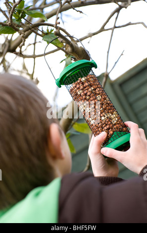 young male boy hanging bird feeder on garden tree - Stock Photo