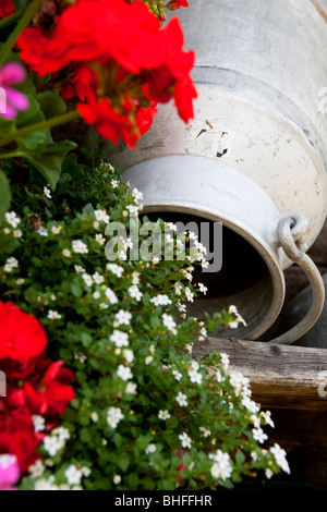 Churn with flowers, Garberl Alm, Eng, Karwendel, Tyrol, Austria - Stock Photo