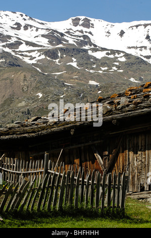 Alpine hut with weathered wooden fence in front of snow covered mountains, Schnals valley, Val Venosta, South Tyrol, - Stock Photo