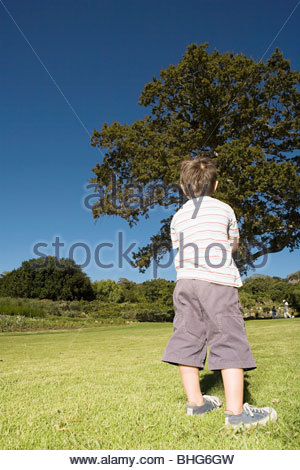 Rear view of little boy standing in park - Stock Photo