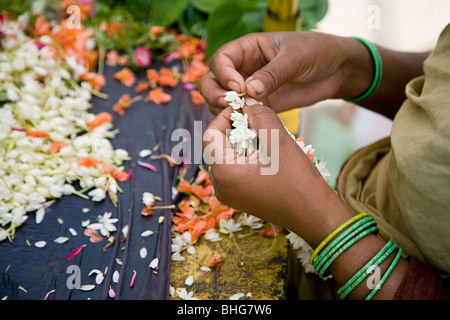 Woman making wreaths from jasmine flowers - Stock Photo